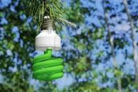 bioenergia.