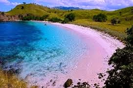Wisata Pantai Pink Di Lombok Menakjubkan