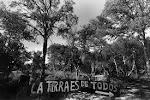 Domingo 13 de marzo de 2010 - a TRES AÑOS DE LA MUERTE DE SANDRA JUAREZ