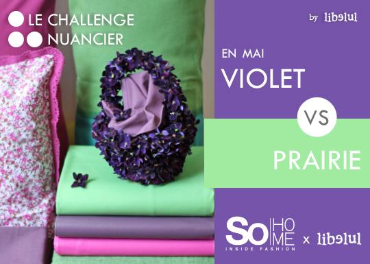 Randonnez vous dans ce blog le challenge nuancier de - Nuancier de violet ...