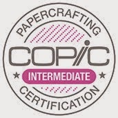 Copic Intermediate Certification