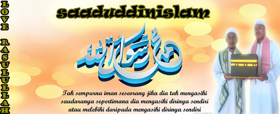 .:: saaduddin islam ::.