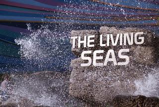 EPCOT's Living Seas Pavilion ~ Photo ©Disney