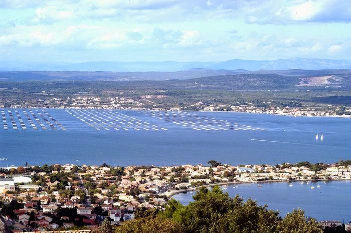 La laguna de Thau en la región de Languedoc