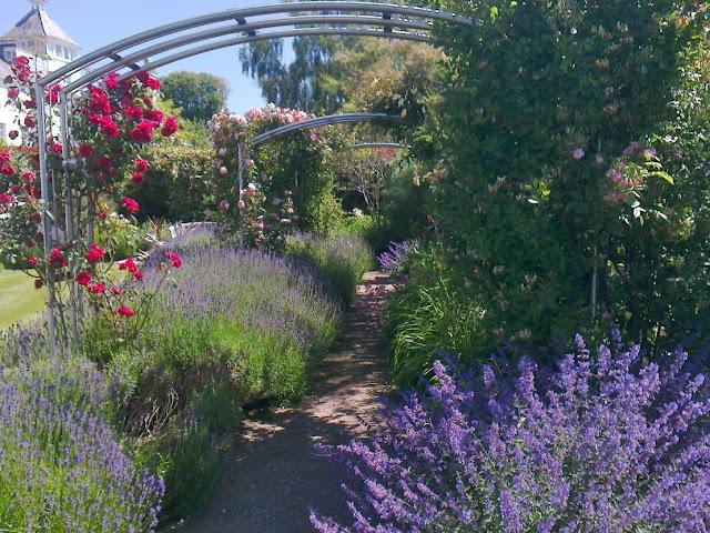 Garden Inspiration - a Coastal Garden