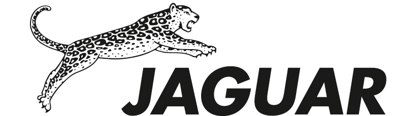 professional scissors inch jaguar e cutting hair shears diamond