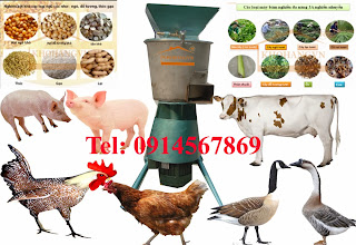 máy chế biến thức ăn chăn nuôi
