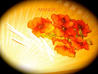 Abanico flores decoupage
