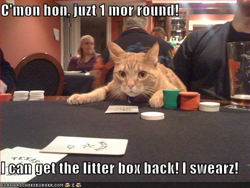Stupid gambling addiction