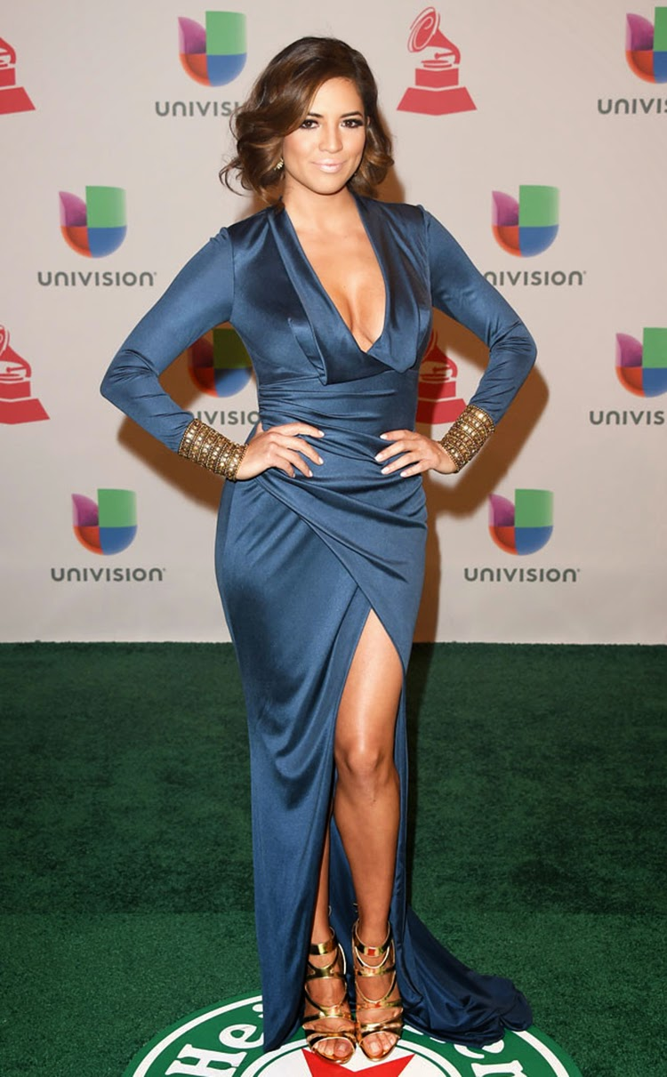 Pamela Silva at 2014 Latin Grammy Awards Red Carpet Arrivals