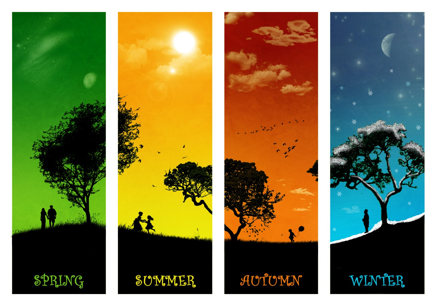 Four Seasons Collage Stock Photo - Download Image Now - iStock