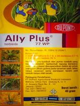 Ally Plus