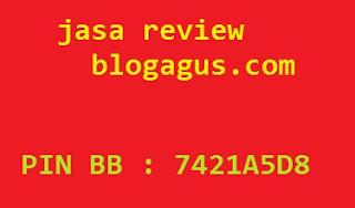 Jasa Review Toko Online, Website dan Bisnis Blogagus.com