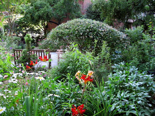 The Barrow Street Garden at the Gardens of Saint Luke in the Fields is adorned with beautiful orange flowers