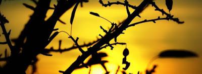 Une Magnifique Couverture Facebook Nature Coucher et Lever de Soleil