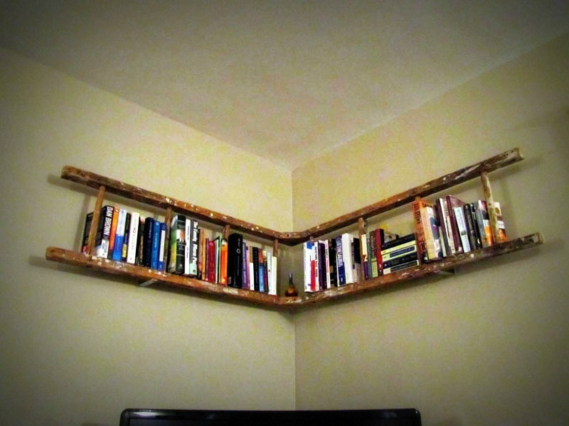 david dangerous ladder shelf