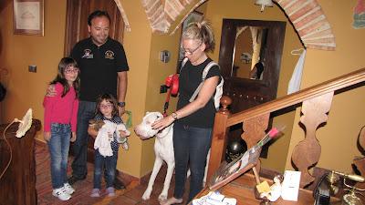 hotel que acepta mascotas