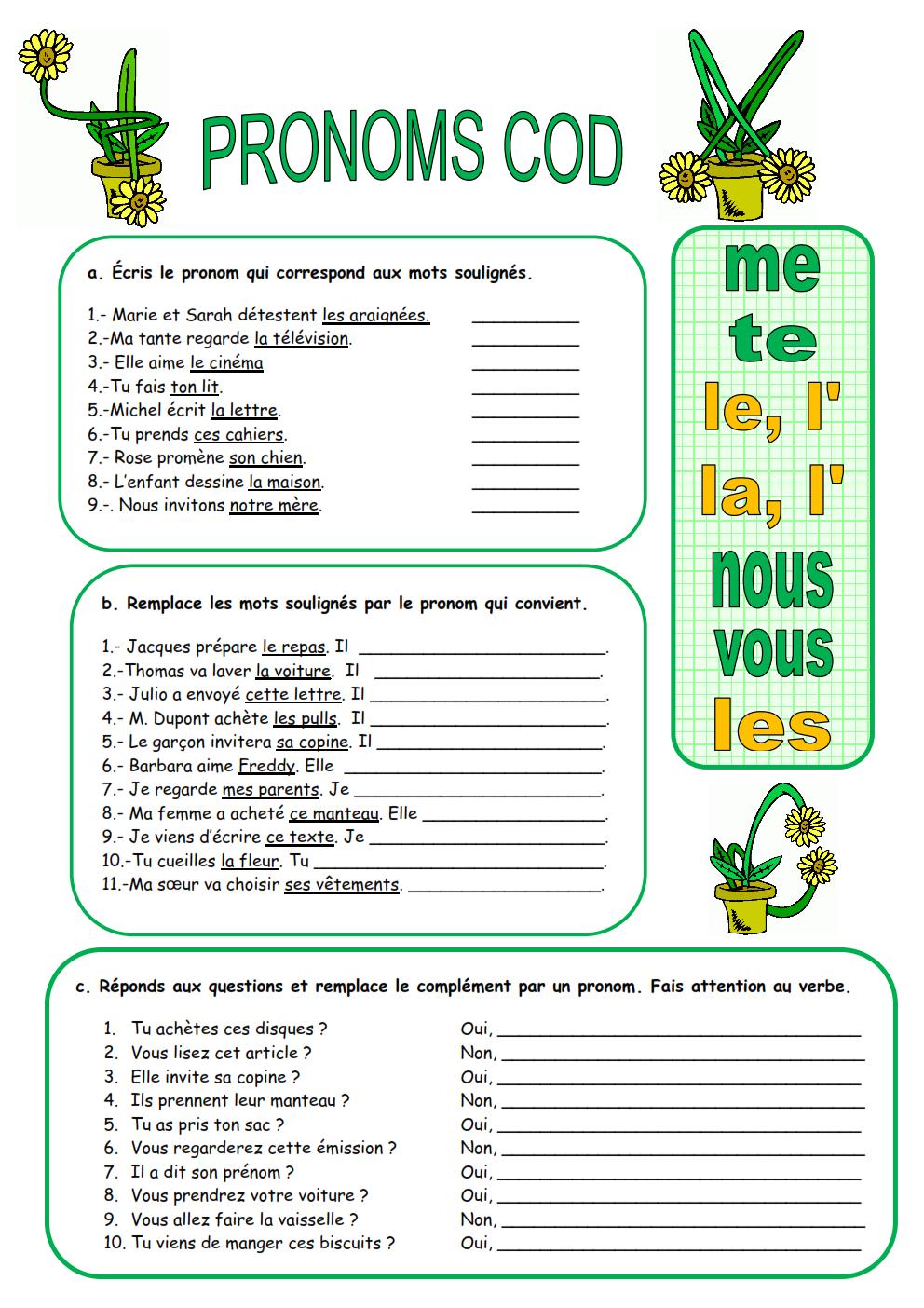 pronom cod et coi fle pdf