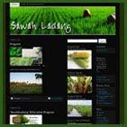 SawahLadang. Com