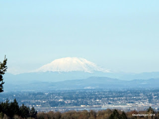 Mt. St. Helens from The Pittock Mansion