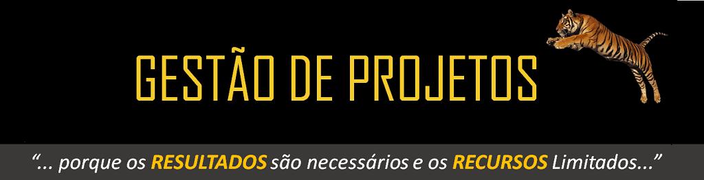 Fernando Paes Nascimento, NBUSINESS Treinamentos e Consultoria em Gestão