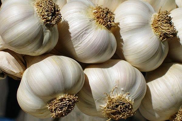 garlic aphrodisiac