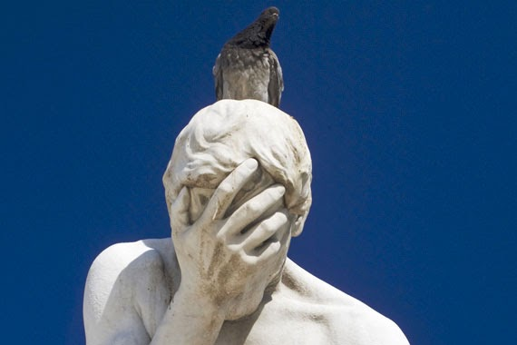 Ahuyentar a las palomas