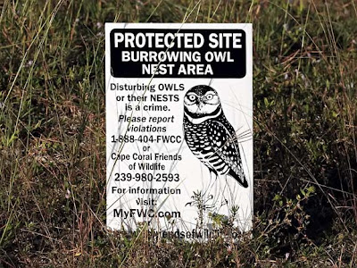 Burrowing Owl Sign