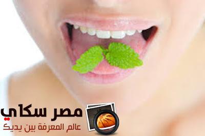 طرق علاج رائحة الفم الكريهة Methods of treating halitosis