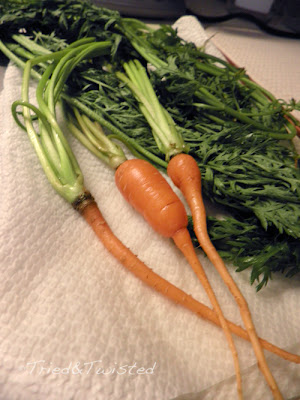 Not every crop is a good crop: Carrots 2013
