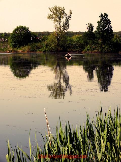 peisaj lac mogosoaia