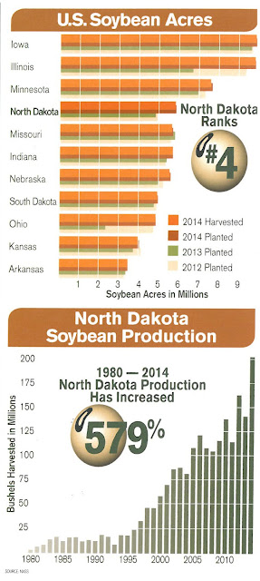North Dakota Soybeans