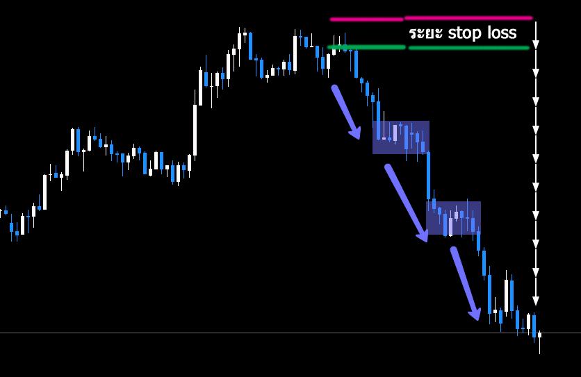 Tsunami forex trading