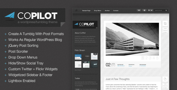 CoPilot wordpress theme free download.