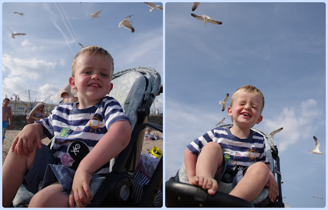 Seagulls at Barry Island