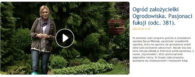 Tendom.pl u Mai w Ogrodzie, czyli Maja w ogrodzie Kasi
