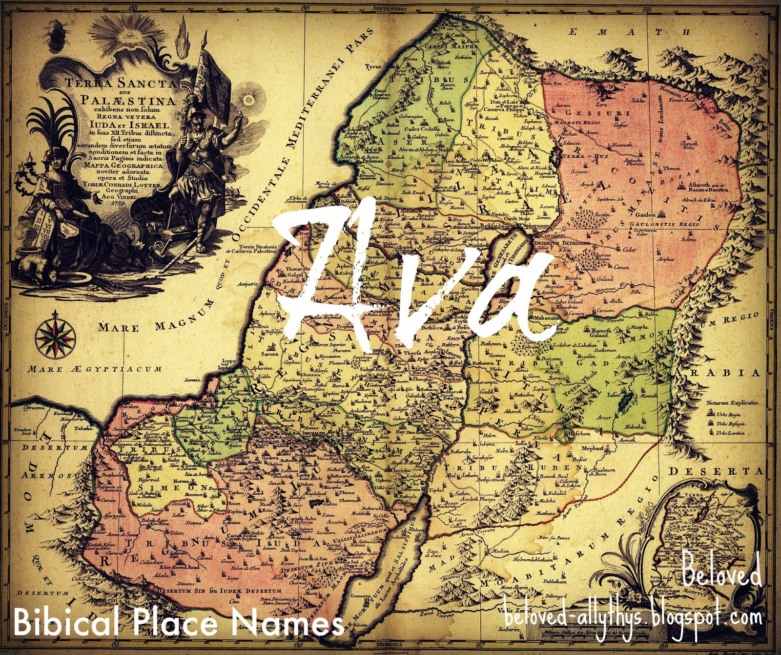 Hebrew meaning of ava