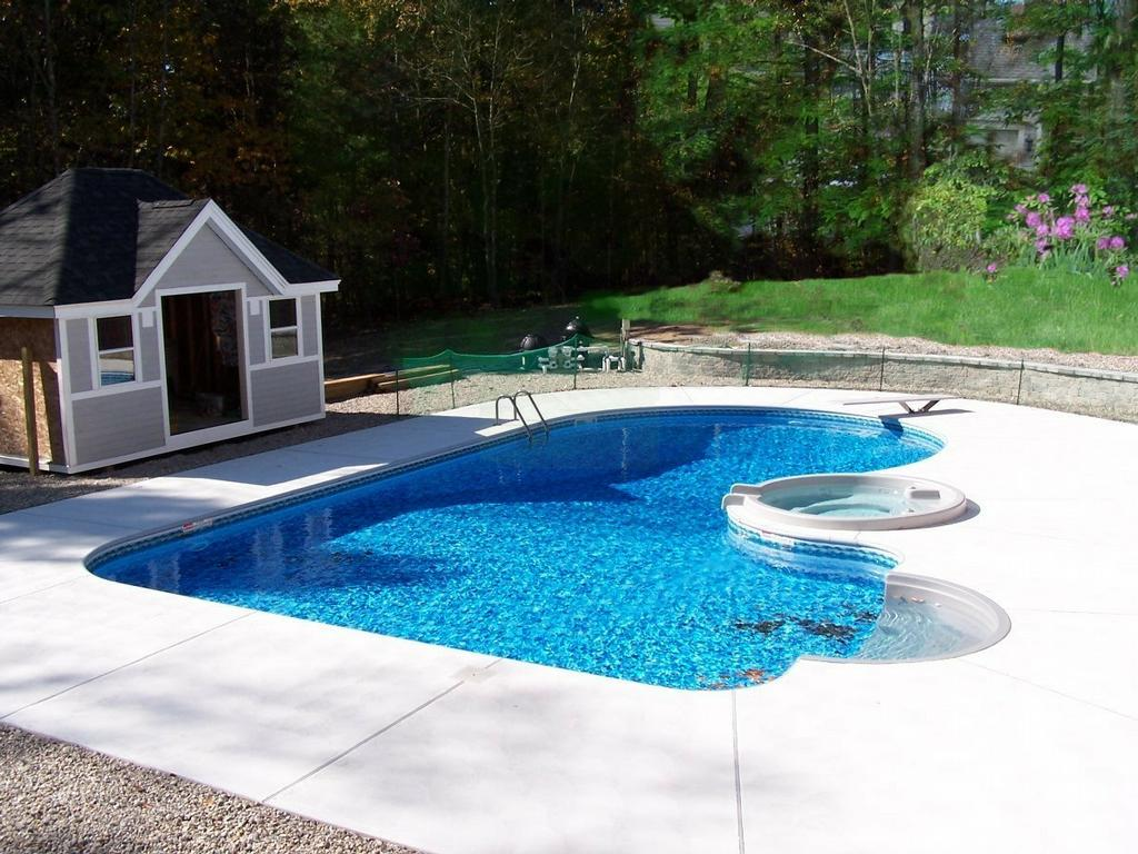 Swimming pool design home design for Pictures of swimming pools in backyards