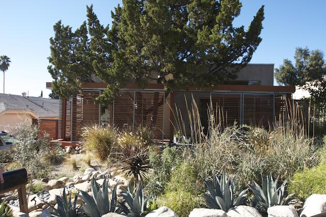 Apply Green Technologies Three Tree House Modern Home