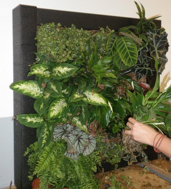 Blog de paisajismo herba nova curso profesional de for Como hacer jardines verticales para interiores