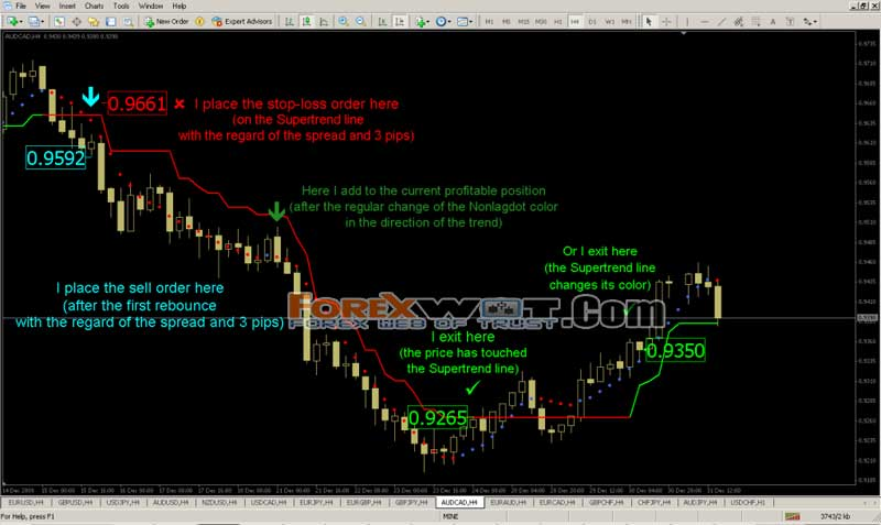 Daily forex advice