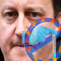 Cameron pleased with eu budget cut of 3%