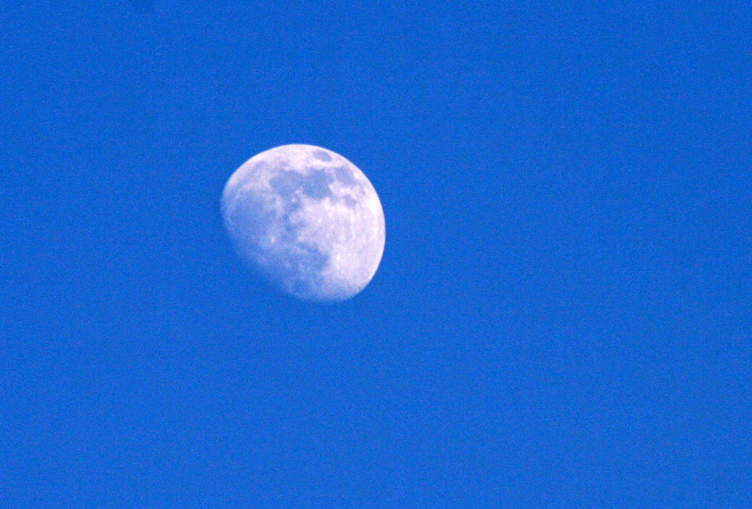 Gorgeous moon in a rich blue sky