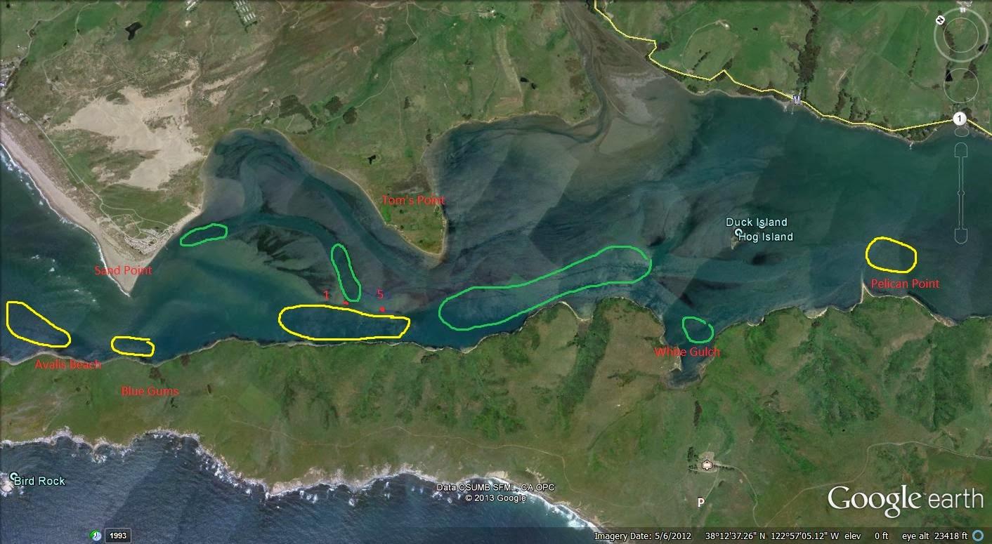lawson 39 s landing fishing report ForTomales Bay Fishing Report