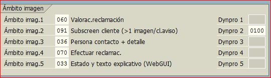 Dynpro de cliente para CLM1