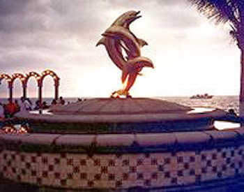 dancing+dolphins+alaska+261.jpg