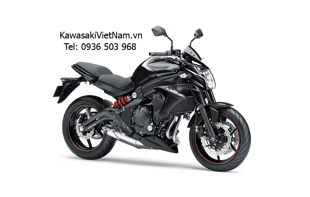 Kawasaki ER-6N 2015