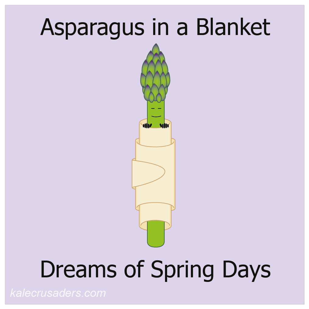 Asparagus in a blanket dreams of spring days; twigs in a blanket