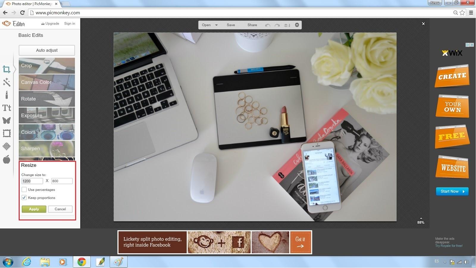 Retoque-fotografico-para-blog-Alexxa26-PicMonkey-y-Paint (3)