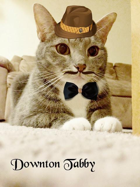Sir Silver Meow